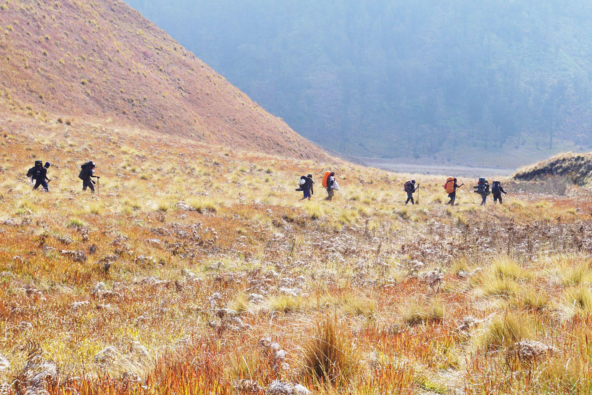 Kursus online gratis untuk menjadi Pemandu Wisata Gunung