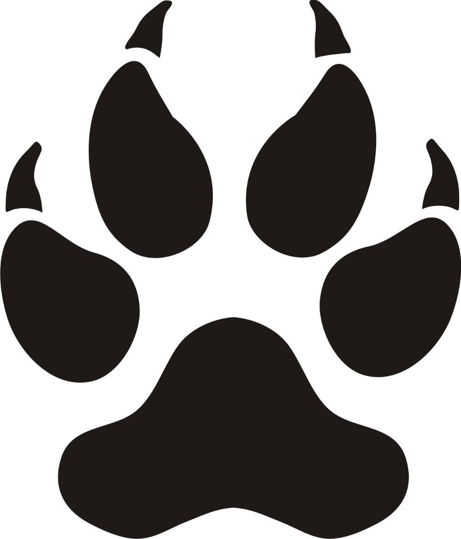 Pin On Pes Panthers