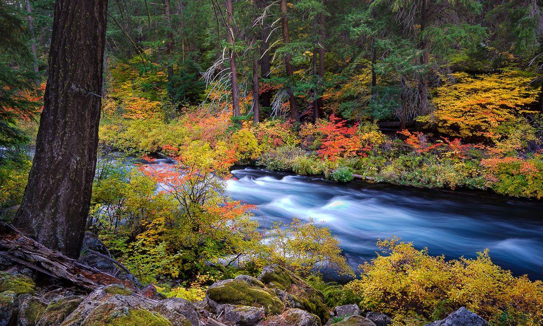 Autumn Rush Metolius River Fine Art Landscape Photograph Mike Putnam Photography Landscape Photographers Fine Art Landscape Fine Art Landscape Photography