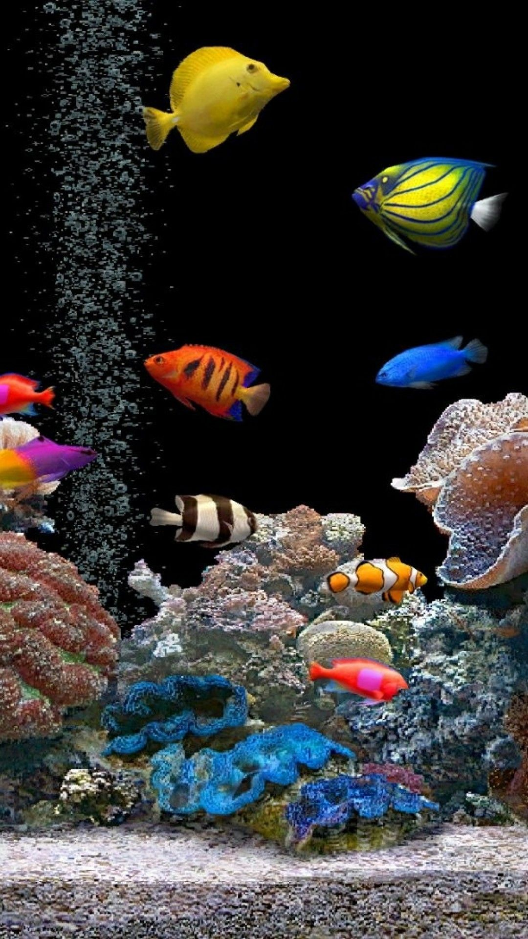 67 3d Live Wallpapers On Wallpaperplay Live Fish Wallpaper Live Wallpaper Iphone Fish Wallpaper