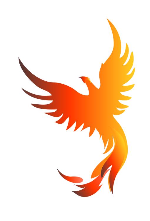 Pin By Vanderlei Ardeo On Photoshopped Things Phoenix Bird Phoenix Artwork Phoenix Design