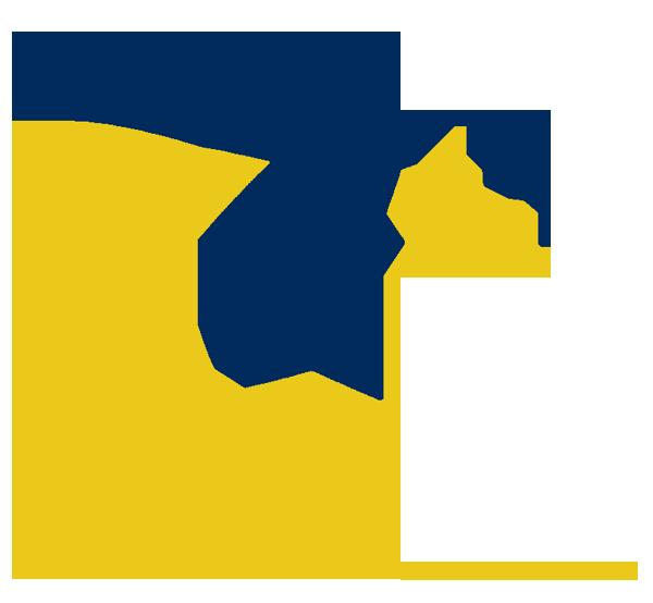 shooting star clip art shooting star logos school pinterest rh pinterest com shooting star logo designs shooting star logo vector