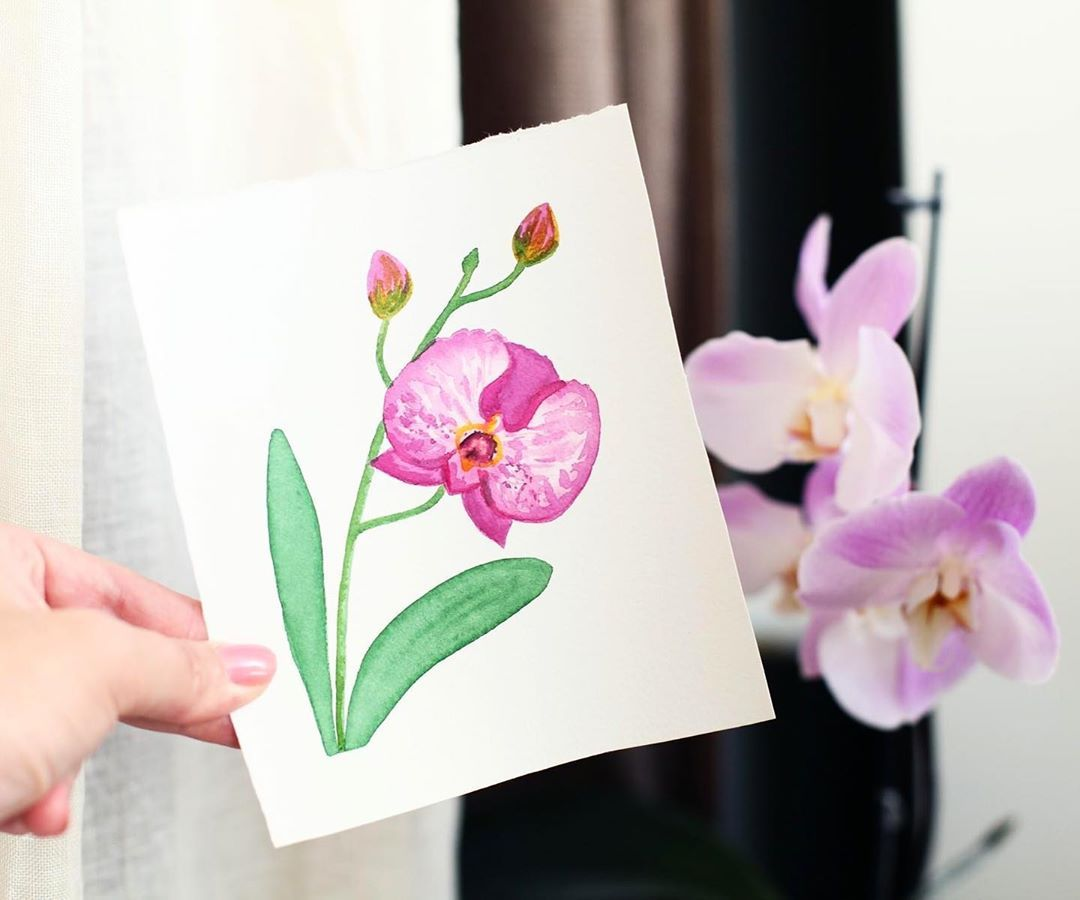 #worldwatercolormonth  #watercolor #watercolorpainting #watercolorart #watercolorsketch #watercolor_daily #watercolorillustration #orhid #phalaenopsisorchid #flower #illustrator #illustrationartist #illustration #hahnemühle #hahnemuhle #cottonpaper