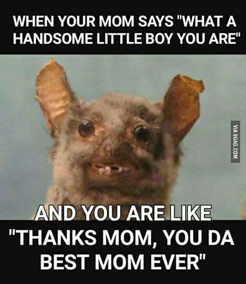 9gag On Instagram Thanks Mom You Re So Sweet 9gag 9gagmobile Funny Pictures Funny Funny Memes