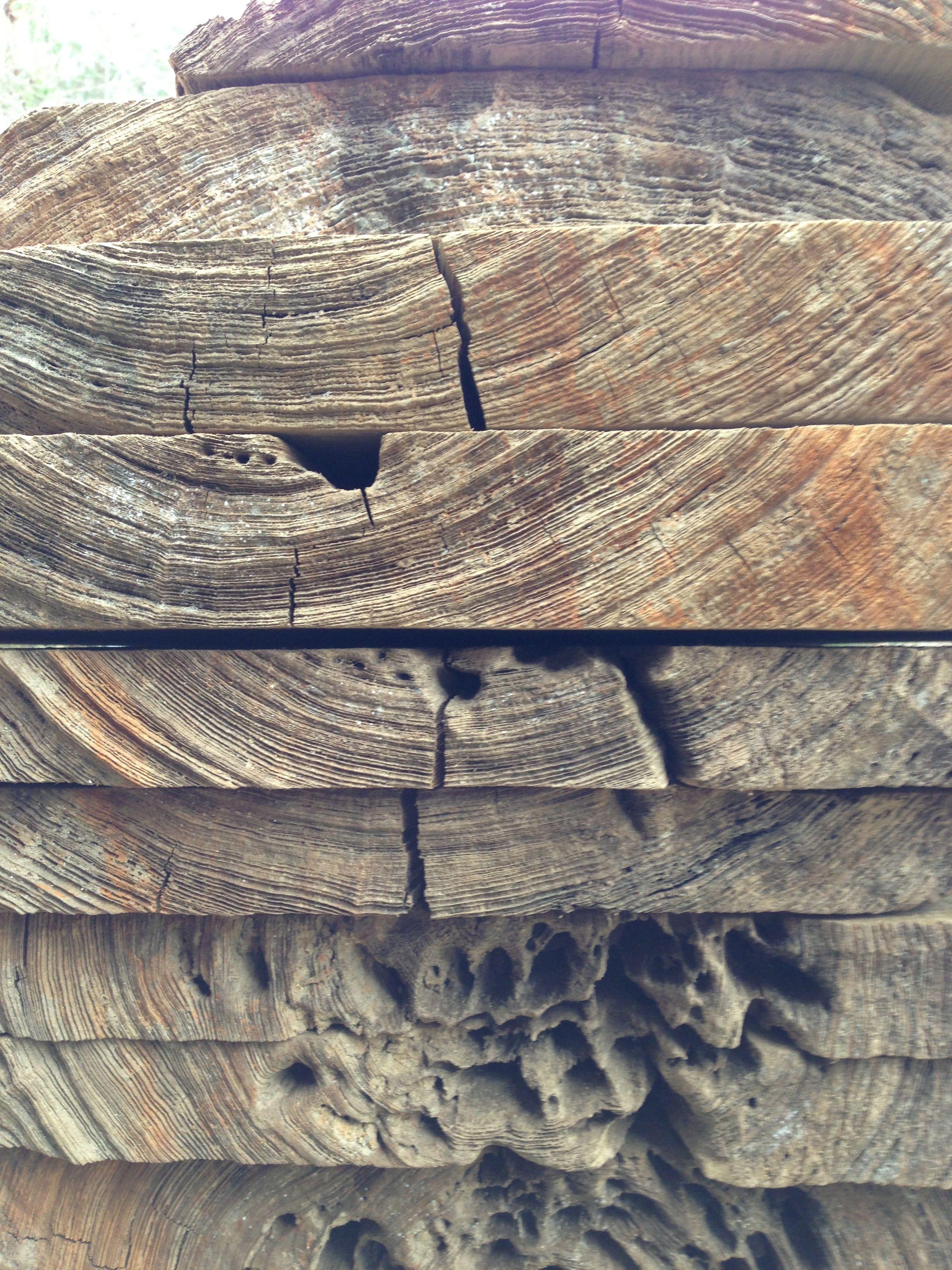 Virgin live edge sinker cypress wood slab from under the black