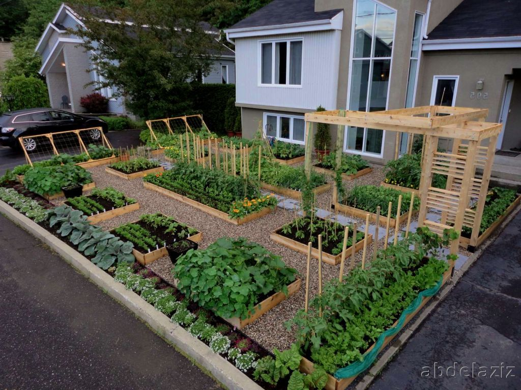 Ordinary Vegetable Garden Ideas For Small Yards Part - 2: Small Garden Ideas And Designs: Vegetable Garden Ideas For Small Yards
