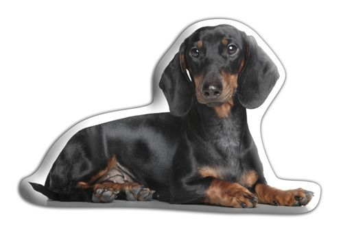 Simple and cute dachsund shaped pillow