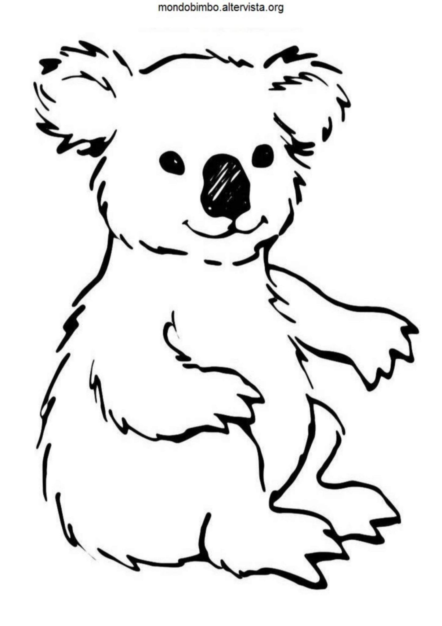 Disegni Da Colorare Animali Koala Check More At S