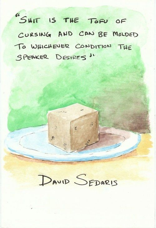 Shit Is The Tofu Of Cursing And Can Be Molded To Whichever Condition The Speaker Desires David Sedaris David Sedaris Book Quotes The Things They Carried