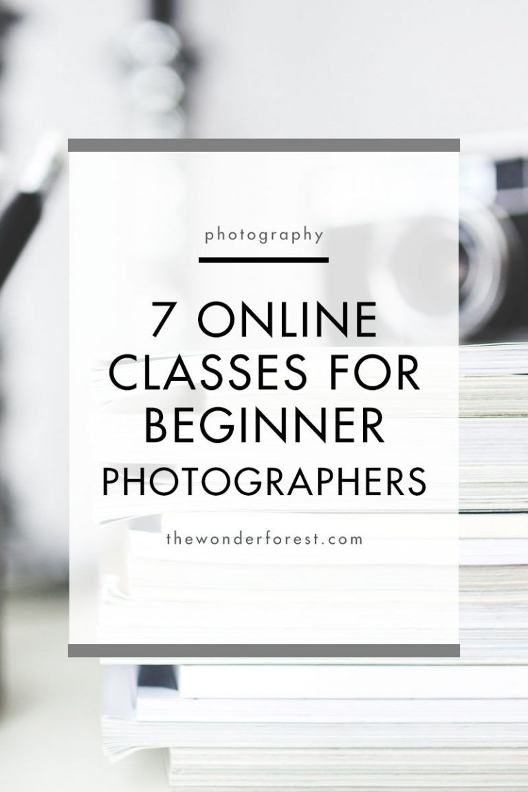 7 Online Photography Classes for Beginners Photography