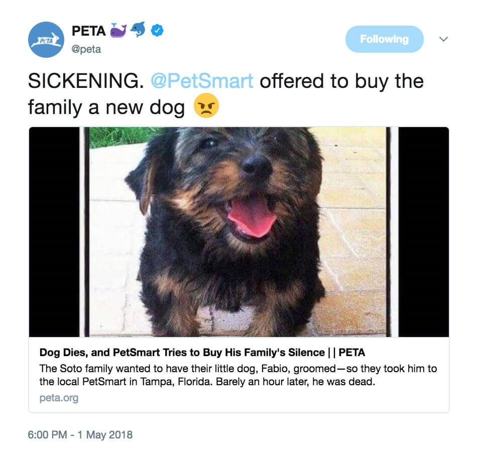 Dog Dies Guardian Heartbroken After Incident At Petsmart Peta Dog Names Animal Companions Petco
