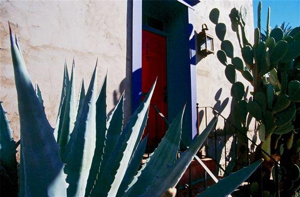 Cactus Laden Barrio Door Picture In Tucson Door Picture Tucson Tucson Az