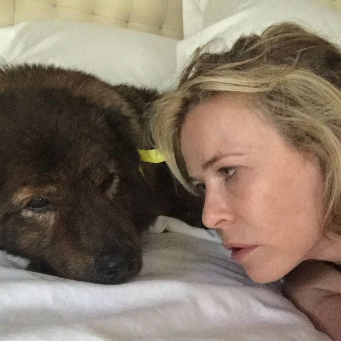 Celebrity Pets and Their Famous Parents Pets, Chelsea
