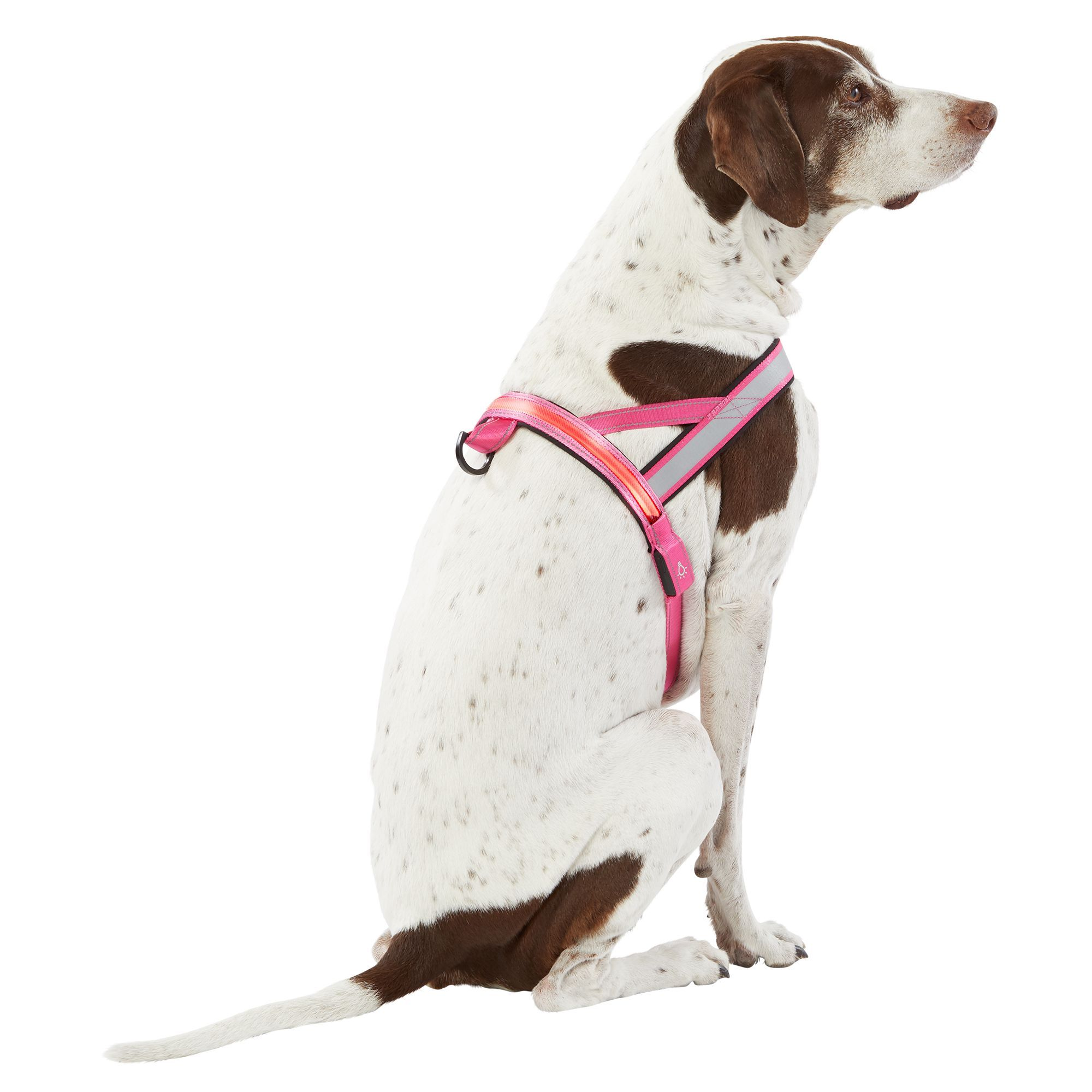 Top Paw Led Reflective Dog Harness Size X Large Pink Dog
