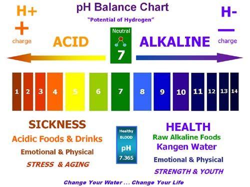 WHY EAT ALKALINE? Ph, Chart and Alkaline diet