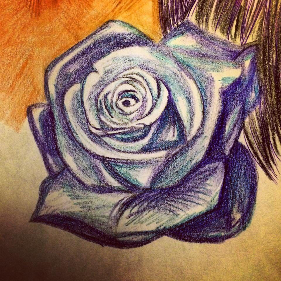 Color purple rose.