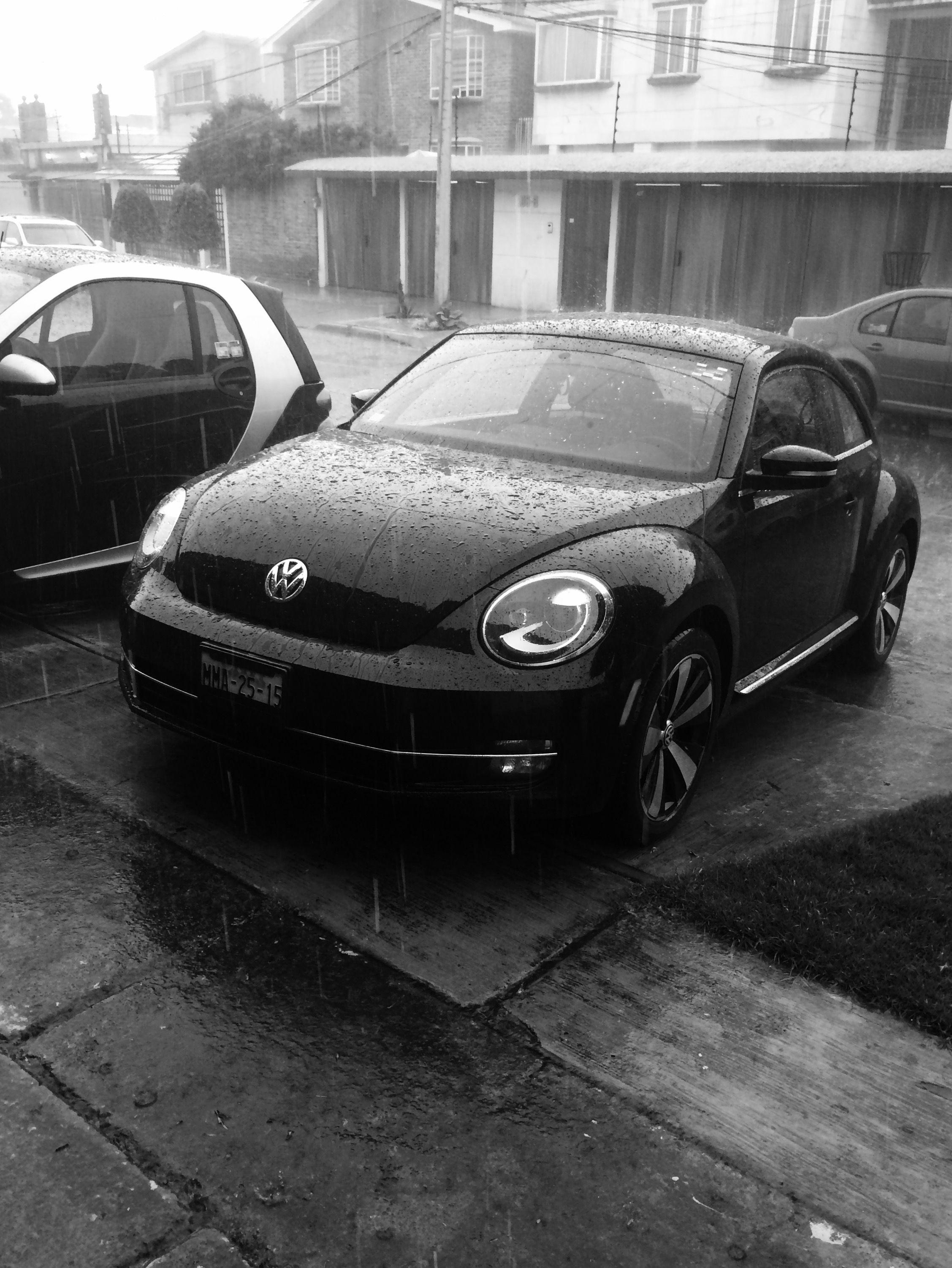 día de lluvia...  Ya mero!!!