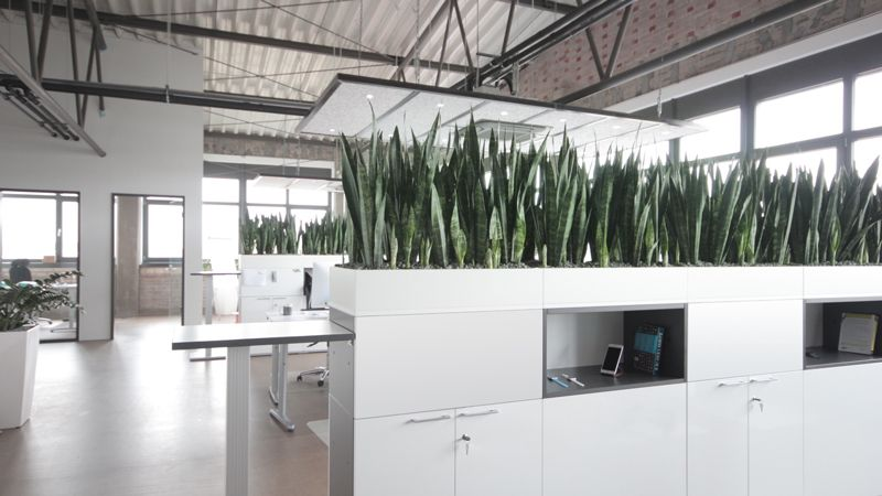 Appcom marketing  interactive office interior design plants partitions modern industrial style also rh tr pinterest