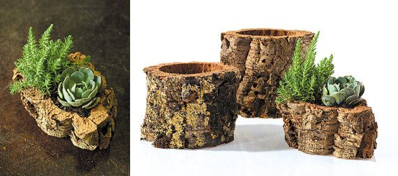 RAW CORK POT by SuiteArtifacts on Etsy