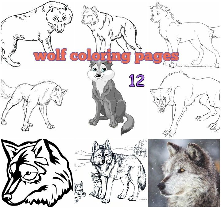 printable wolf coloring pages for kids. | Coloring pages, Animal ...
