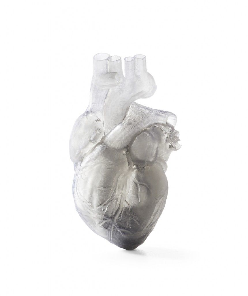 Formlabs Introduces New Impact-Resistant/Flexible & Castable 3D Printing Resins - flexible heart