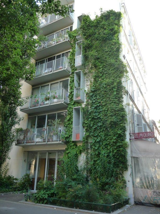 Caf Paris  Avenue Jean Jaures