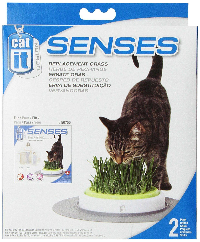 Fresh Catit Design Senses Grass Garden Refill Kit Pack You can find more