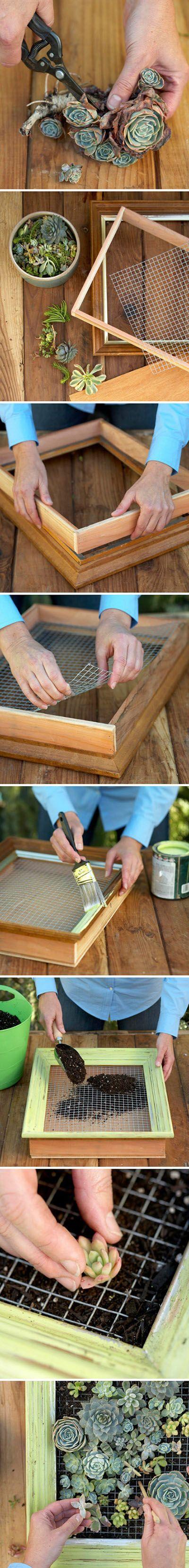 Great Bonsai Idea | DIY & Crafts