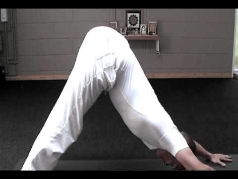 integral yoga sun salutation for beginners