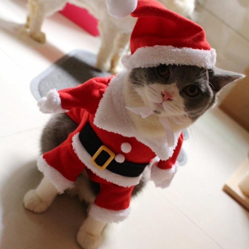 [MPK Cat Costumes] Santa Clause Cat Costume!! Cute Santa! Red Santa Pet Cat  Clothes Outfit, Coat Apparel, X-Mas Costume - MPK Cat Costumes] Santa Clause Cat Costume!! Cute Santa! Red Santa