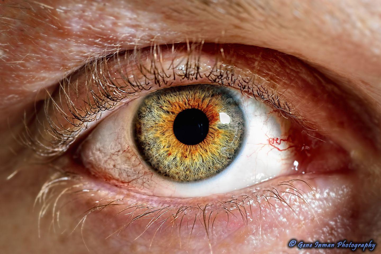 Self Portrait Macro Eye 105mm Macro Photography Eyes Aesthetic Eyes Beautiful Eyes Color
