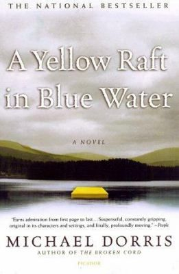 A Yellow Raft In Blue Water Fiction Books For Teens Good Books