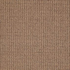 Carpet Tigressa Cherish Redfield Wild Mushroom 12 Carpets Online Carpet Pricing Carpet