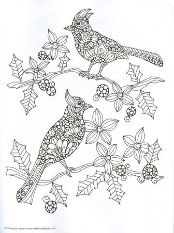 Valentina Harper Coloring Pages Google Search Bird Coloring Pages Animal Coloring Pages Coloring Books