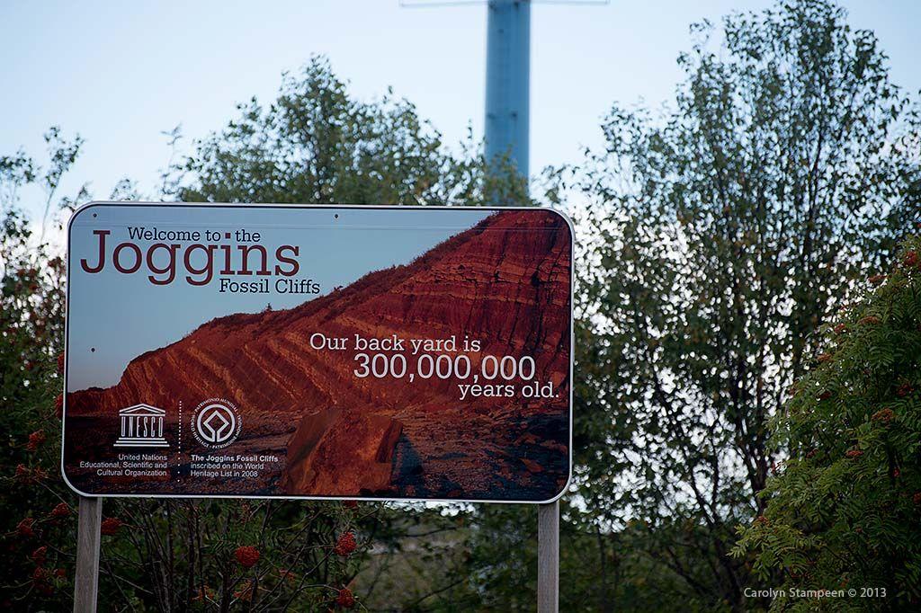 Joggins Fossil Cliffs in Joggins, NS
