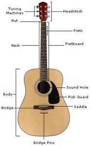 anatomy of a guitar quiz bing images beginner guitar. Black Bedroom Furniture Sets. Home Design Ideas