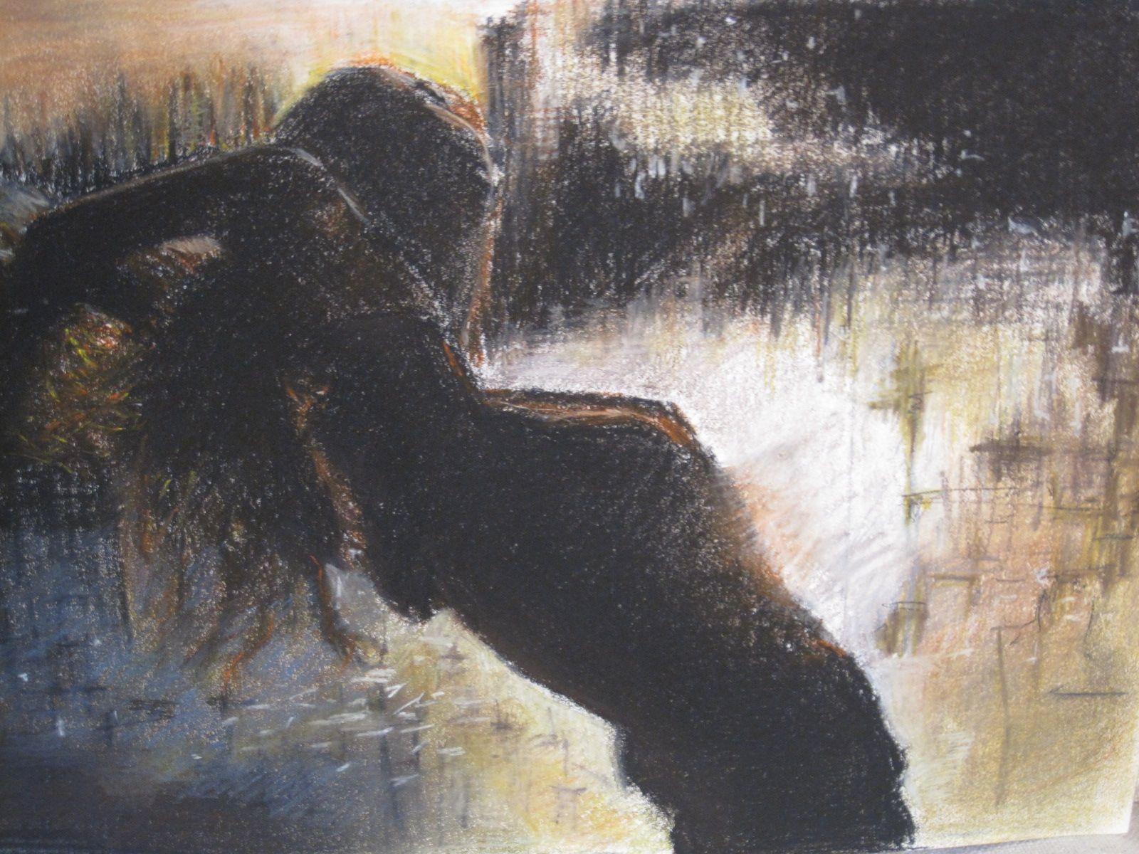 Puesta de sol por Charo Onieva
