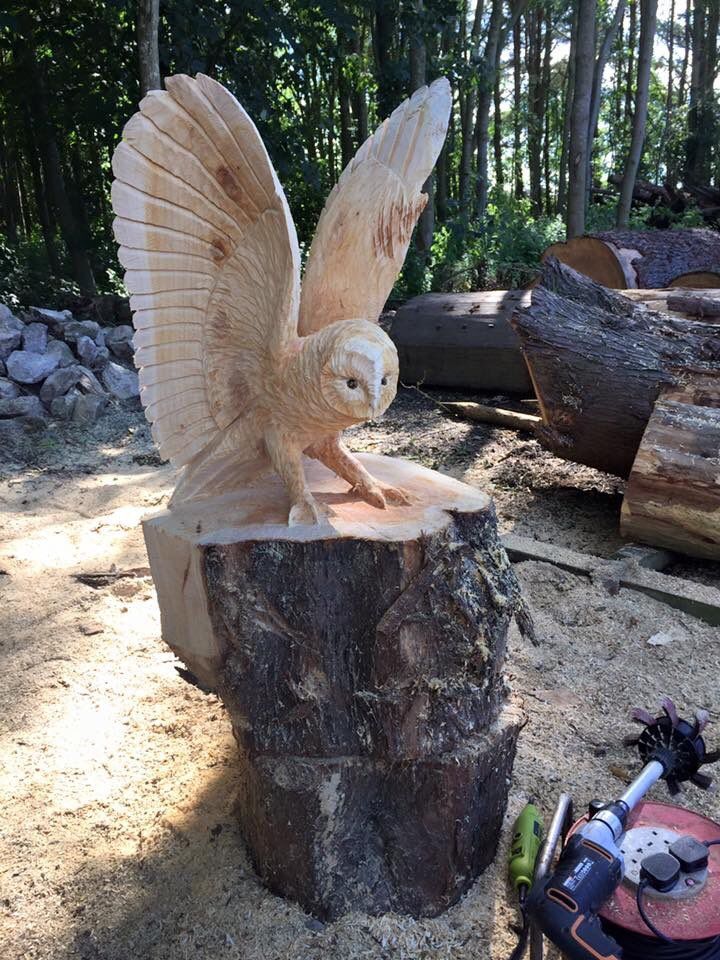 Embedded image woody pinterest chainsaw carvings