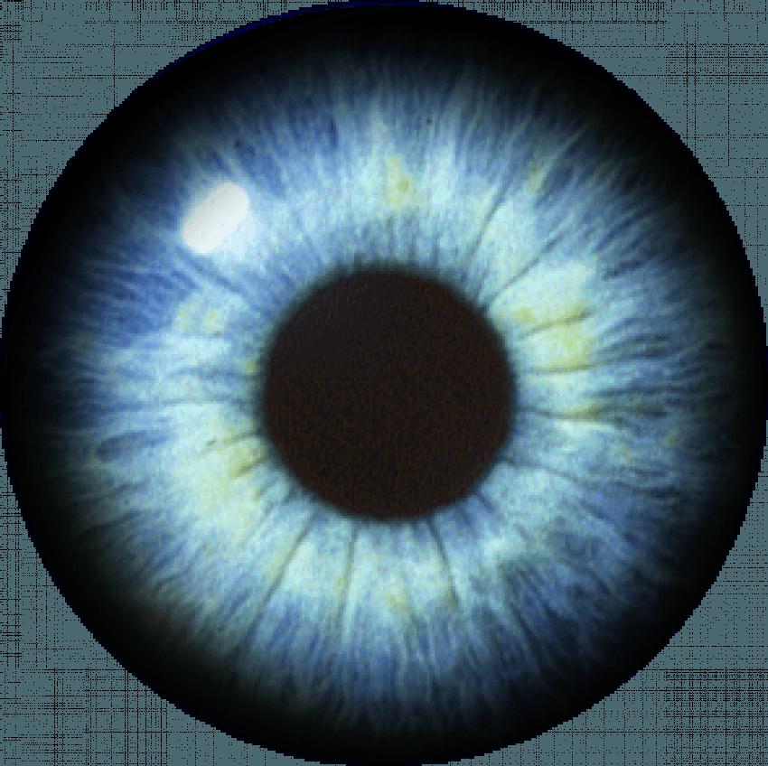 Eye Lens Png Images For Cb Editing Light Background Images Png Images New Background Images