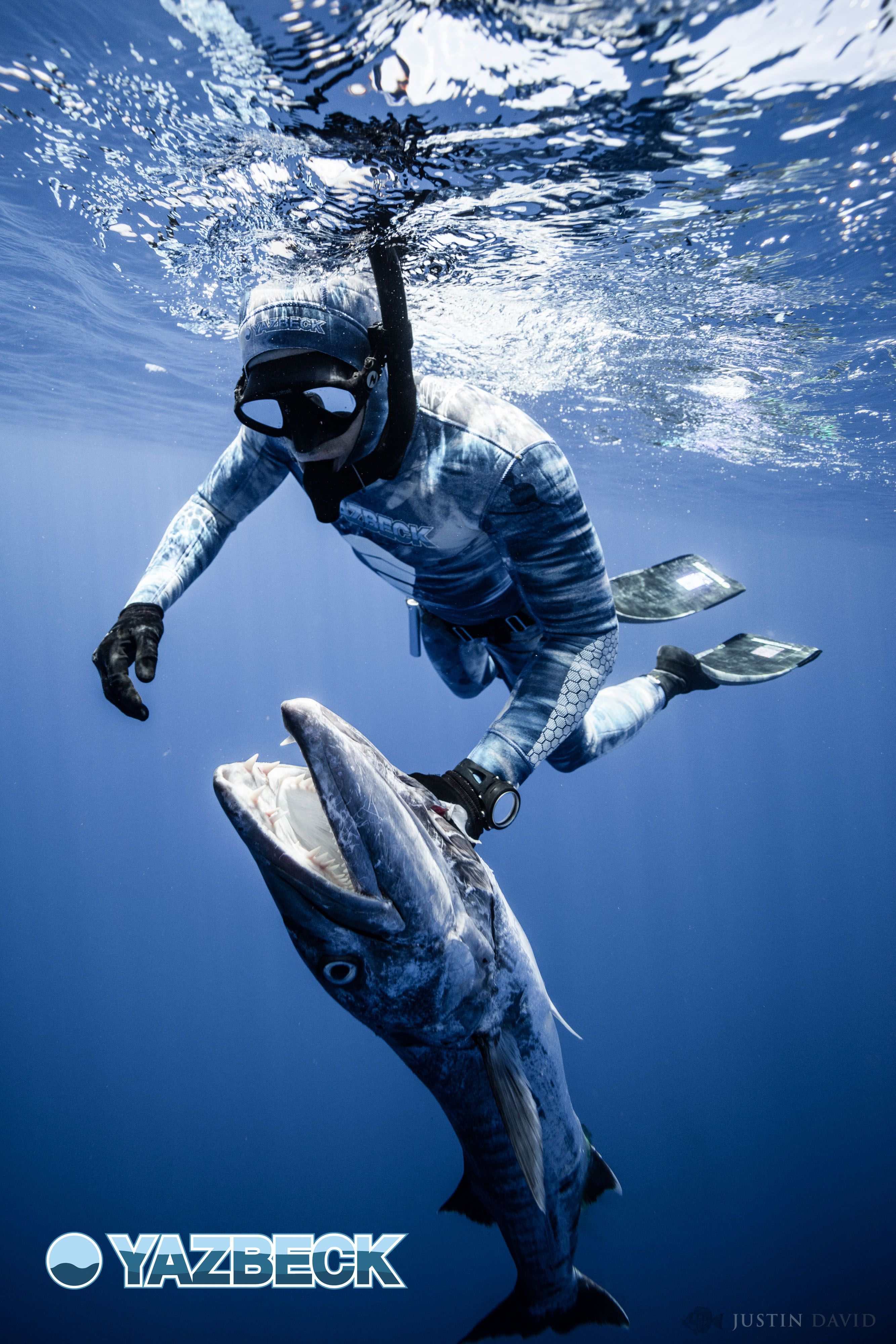 Spearfishing, Wetsuits, Diving
