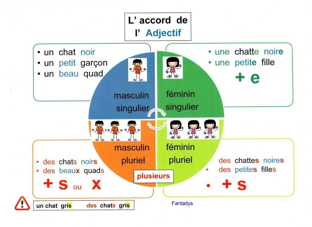 l accord de l adjectif qualificatif - Yahoo Image Search Results (avec images) | Grammaire, Les ...