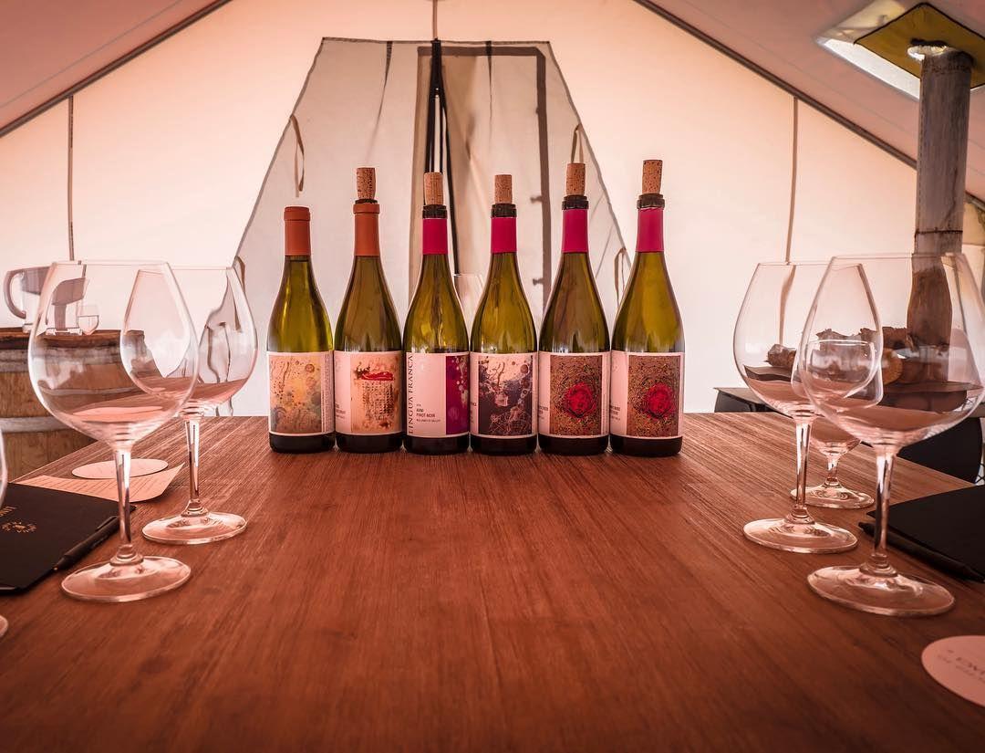 Lingua Franca Winetasting Winetravel Wine Tasting Wine Travel Winery Tours