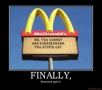 """Cat says: """"I CAN, and I WILL haz cheeseburger!"""""""