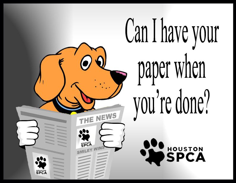 The Houston SPCA needs donations of newspapers. Bring us