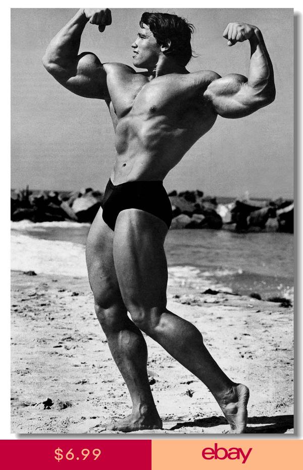 Poster Arnold Schwarzenegge Body Building Room Art Wall Cloth Print 510 Arnold Schwarzenegger Bodybuilding Arnold Bodybuilding Schwarzenegger Bodybuilding