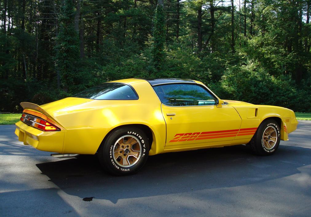 1979 chevrolet camaro Z28 | Chevrolet camaro, Chevrolet and Cars