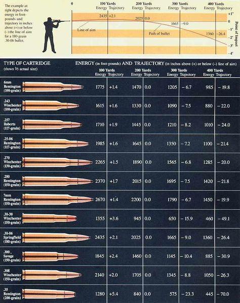 Gun Caliber Size Chart : caliber, chart, Hunting
