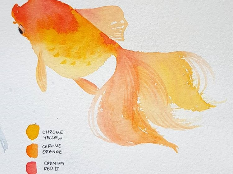 Tutorial Goldfish Watercolor Watercolor Fish Japanese Drawings