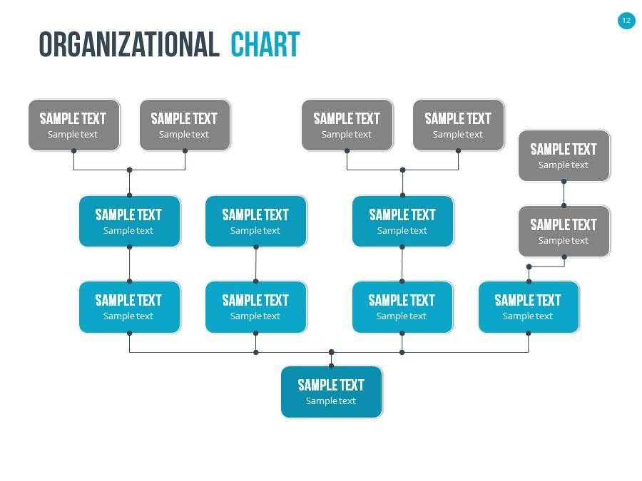 Organizational Chart And Hierarchy Template  Charts