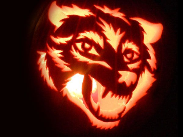 Wolf-Face-Pumpkin-Carving-Ideas | pumpkin carving ideas ...